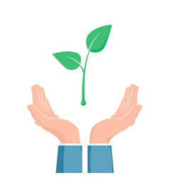 plant growth between two hands eco symbol cupped vector image