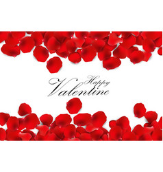 red rose petals on a white background vector image vector image