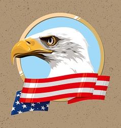 USA SIMBOL vector image vector image