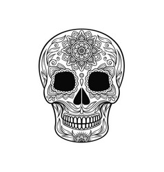 Day of the dead skull sugar skull with floral vector