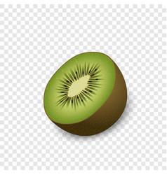 half of kiwi mockup realistic style vector image