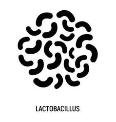 lactobacillus icon probiotic concept logo vector image