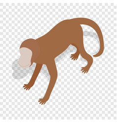 monkey isometric icon vector image