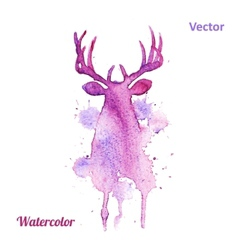 watercolor deer head on white background vector image
