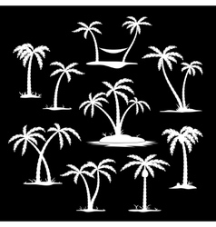 Coconut tree silhouette icons vector image vector image