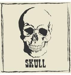 skull Grey background vector image vector image