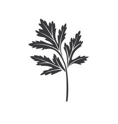 Cilantro glyph icon vector