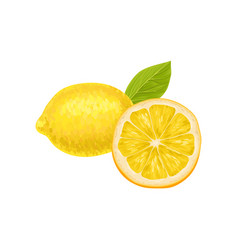 composition with whole and half of ripe lemon vector image