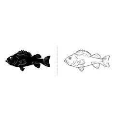 fish silhouette sea animal vector image