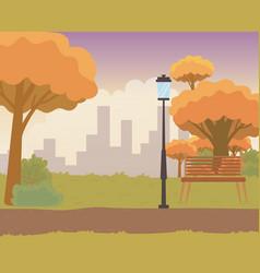 Landscape a park with trees design vector