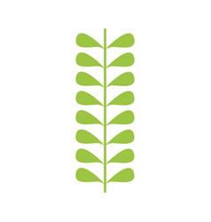 leafs plant wreath icon vector image