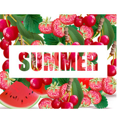 summer watermelon strawberry cherries fusion vector image