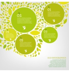 Leaf infographic vector image vector image