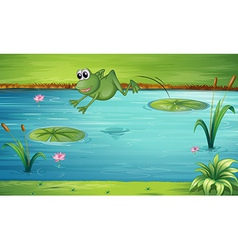 A frog jumping vector image