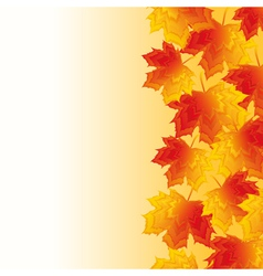 Autumn background with yellow maple leaf vector