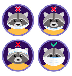 cute raccoon shows how to wear face mask vector image