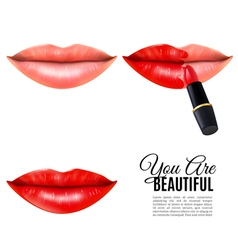 Make Up Beauty Lips Realistic Poster vector