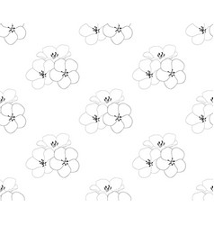 Nemophila baby blue eyes flower seamless vector