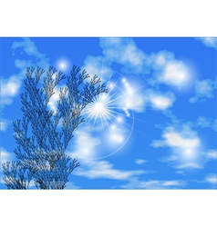 sky and herb vector image