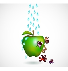 Washing an apple vector