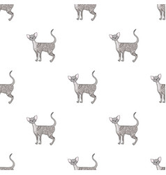cornish rex icon in cartoon style isolated on vector image vector image