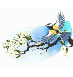 Tomtit and cherry branch vector
