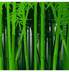 decorative bamboo background vector image