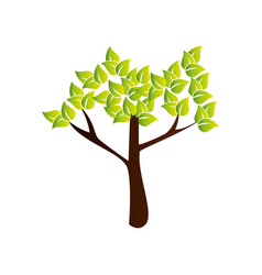 Tree plant nature icon vector