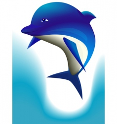 cheerful dolphin vector image