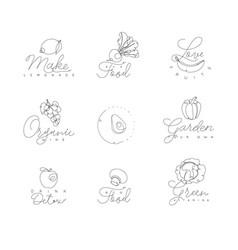 Fruits and vegetables pen line symbols vector