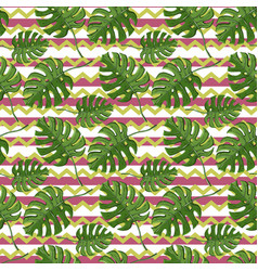 monstera plant seamless pattern on a vector image
