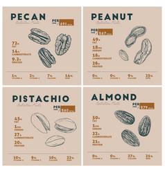 Nutrition facts nut pecan peanut pistachio vector