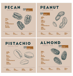 nutrition facts of nut pecan peanut pistachio vector image