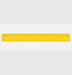 ruler inch scale plastic measurement vector image