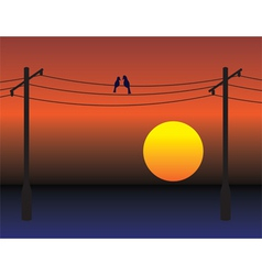 electrical wires vector image vector image