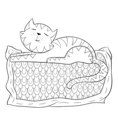 adult coloring bookpage a cute sleeping cat on vector image