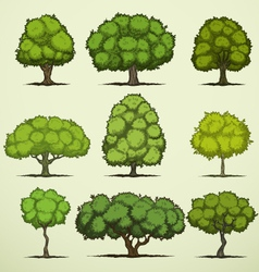 Cartoon deciduous trees vector