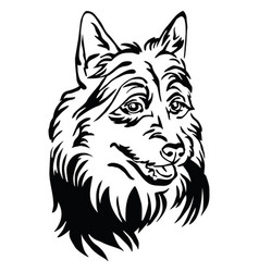 Decorative portrait australian terrier vector