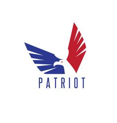 Design template abstract patriotic eagle vector