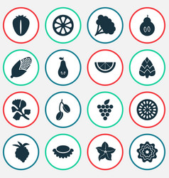 fruit icons set with berry lychees pear and vector image
