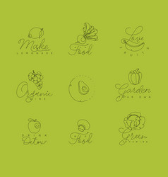 fruits and vegetables pen line symbols green vector image
