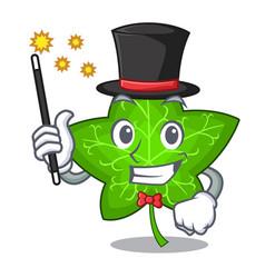 Magician mascot cartoon beautiful ivy leaf plant vector