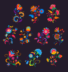 Mexican flowers or florals bright blooming plants vector