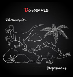 velociraptor and stegosaurus on chalk vector image