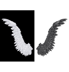 White and Black Wing vector
