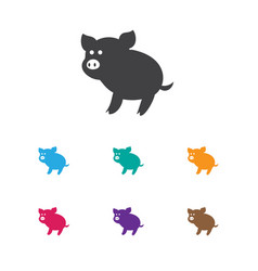 of zoo symbol on piggy icon vector image vector image