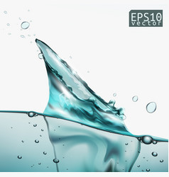 Transparent water splash with wave and bubbles vector