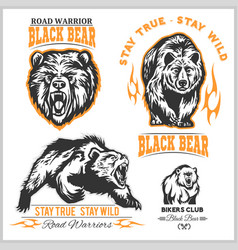 Black bear for logo sport team emblem design vector