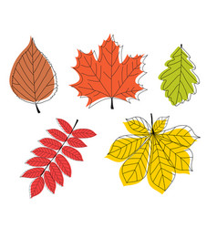 hand drawn autumn leaves collection set vector image