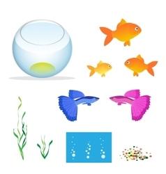 Isometric aquarium with fishes algae vector